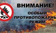 О введении особого противопожарного режима на территории Асбестовского городского округа.