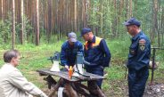 Что нужно знать, если вы отправляетесь в лес!