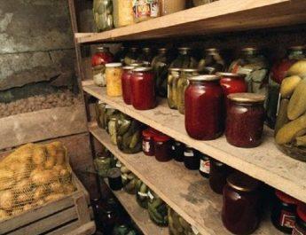 Подготовка овощных ям