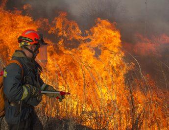Информация о пожарах в Асбестовском городском округе  за  пять месяцев 2021 года.