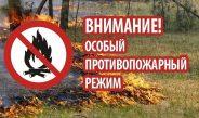 Об установлении особого противопожарного режима на территории Асбестовского городского округа.