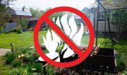 Пожарная безопасность для садоводов.